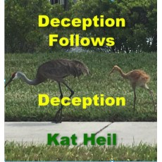 Deception Follows Deception